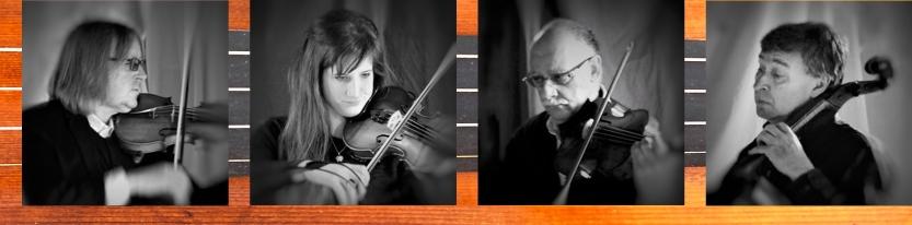 Havel Quartet Strings